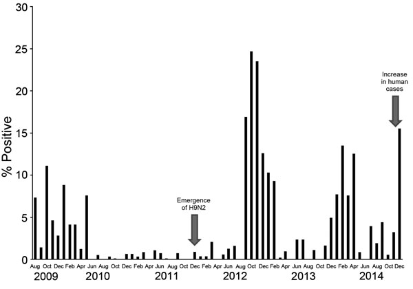 Monthly positivity rate of poultry infection with avian influenza viruses (all types), Egypt, August 2010–December 2014. A seasonal pattern is shown by sharp increases in rates during colder months (November–March). Emergence of H9N2 virus in poultry and an increase in human H5N1 cases are indicated.