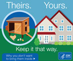 "Thumbnail of A ""Tips to Stay Healthy around Backyard Poultry Flocks"" web graphic produced by the Centers for Disease Control and Prevention."