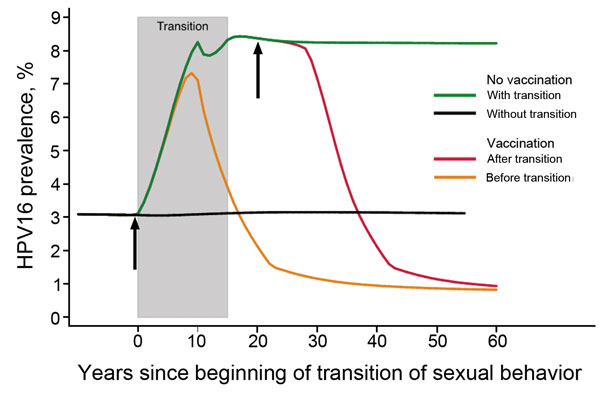 Changes in prevalence of human papillomavirus type 16 among women 20–34 years of age in relation to the number of years since the beginning of a population's transition from traditional to gender-similar age-related sexual behavior and the introduction of vaccination among 11-year-old girls (with assumption of 70% coverage) before and after transition. Shaded area shows an assumption of a 15-year transition period. Arrows show approximate timing of vaccination occurring before or after a transit