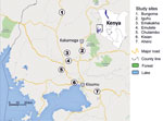Thumbnail of Study sites (circles) for discerning the presence of pyrethroid and DDT resistance and organophosphate susceptibility among Anopheles spp. mosquitoes, western Kenya, 2012–2013.