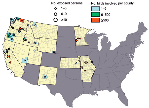 Number of highly pathogenic avian influenza A H5 virus–infected birds and minimum number of exposed persons by state and county, United States, December 15, 2014–March 31, 2015. Yellow indicates states in which outbreaks occurred.