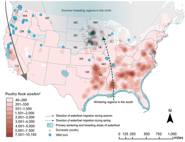 Highly Pathogenic Avian Influenza Virus Midwestern United States - Map of us flu outbreak