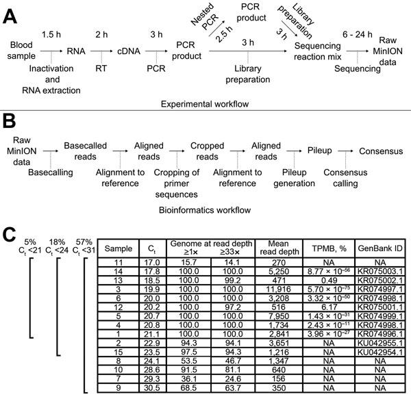 Figure 1 - Nanopore Sequencing as a Rapidly Deployable ...