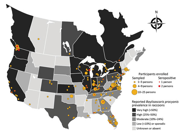Locations for participant sampling in a study of Baylisascaris procyonis roundworm seroprevalence among wildlife rehabilitators, United States and Canada, 2012–2015. Yellow dots indicate counties (USA) or township/municipality (Canada) in which enrolled persons reported practicing wildlife rehabilitation. Red dots indicate locations of seropositive persons. Shading of states/provinces indicates general state/province level prevalence of B. procyonis in raccoons based on published reports (1,8–11