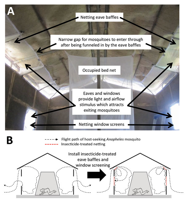 Design (A) and mechanism of action (B) of insecticide-treated window screens and eave baffles for control of malaria vector mosquitoes, Tanzania.