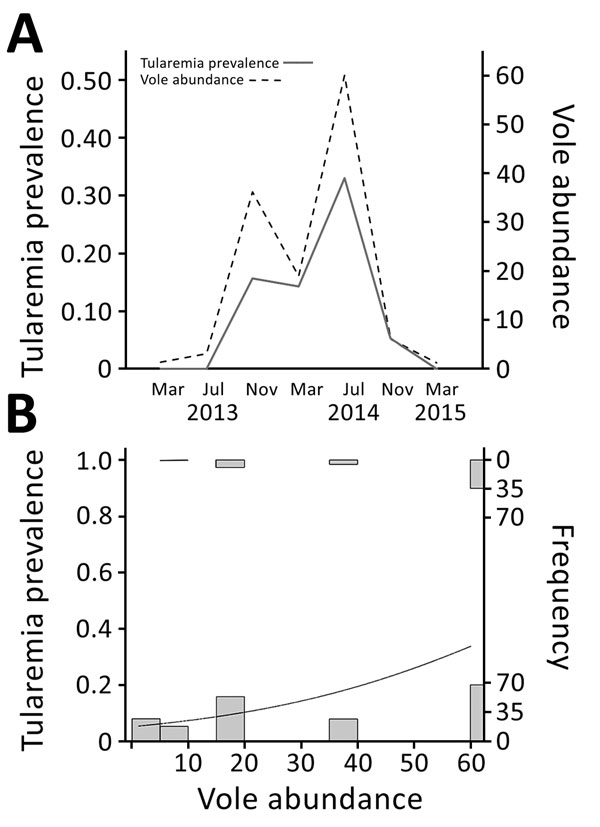 Vole abundance and tularemia prevalence, northwestern Spain. A) Temporal variations in vole abundance (no. captures/100 traps/24 h) and tularemia prevalence. Spain. Four voles were tested in March 2013, 15 in July 2013, 32 in November 2013, 63 in March 2014, 102 in July 2014, 19 in November 2014, and 8 in March 2015. B) Relationship between tularemia prevalence and vole abundance. Histograms show number of positive (top) or negative (bottom) voles sampled at each level of vole density. Curved li