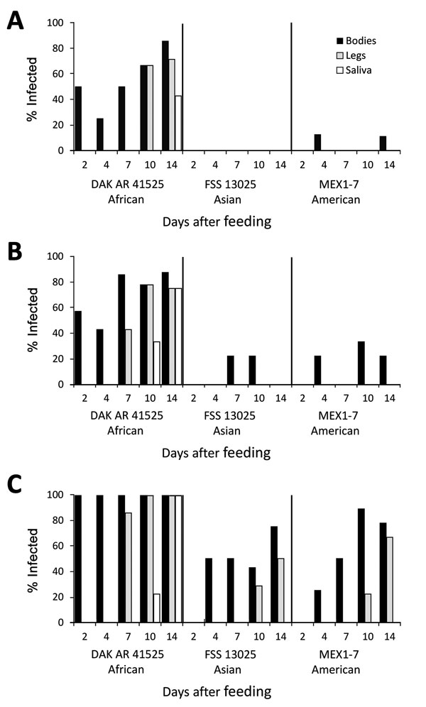 Infection, dissemination, and transmission of 3 Zika virus strains by Aedes aegypti mosquitoes from Salvador, Brazil, after artificial blood meals with a concentration of 4 log10 (A), 5 log10 (B), or 6 log10 (C) focus-forming units/mL.