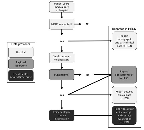 Reporting pathway for data regarding persons tested for Middle East respiratory syndrome coronavirus infection to the Health Electronic Surveillance Network (HESN), Saudi Arabia, 2014–2016.