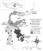 Thumbnail of Individual sampling sites where macaques were tested for infection with Treponema spp. during 1999–2012 and the number of human yaws cases during 2001–2011, Sulawesi, Indonesia. Numbers in parentheses indicate number nonhuman primates sampled in each of the 6 provinces. ESPLINE TP (Fujirebio Inc., Tokyo, Japan) reagent for the detection of T. pallidum antibodies was used to determine whether macaque samples were positive for treponemal infection. The number of human yaws cases was d
