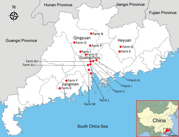 Farm locations for study of influenza D viruses in cattle, goats, buffalo, and pigs, Guangdong Province, China.