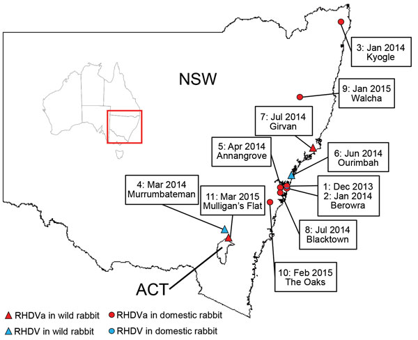Thumbnail of RHDV and RHDVa detections in Australia, January 2014–March 2015. Sites where RHDVa and Australian RHDV field strains were detected are indicated on the map and numbered according to the order in which the outbreaks occurred. Inset shows location of NSW and ACT in Australia. ACT, Australian Capital Territory; NSW, New South Wales.