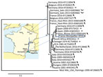 Thumbnail of Phylogenetic relationship of the France-Montpellier-2016 strain of Usutu virus (USUV) (box; GenBank accession no. LT854220), isolated from a 39-year-old man in Montpellier, France, who had an atypical neurologic presentation, compared with other USUV strains based on the partial nonstructural protein 5 gene sequence. USUV sequences are shown with their country of isolation, year of isolation, and GenBank accession numbers. Hosts from which the strains were detected (bird, mosquito,
