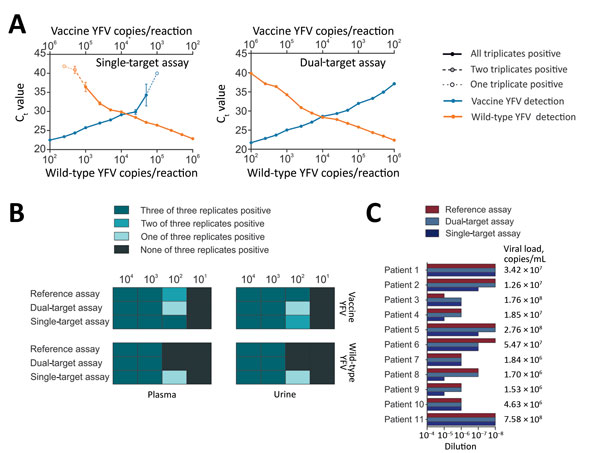 Validation of new real-time RT-PCRs for differentiation between vaccine and wild-type YFV. A) Effects of target competition on YFV real-time RT-PCRs. Mean cycle threshold (Ct) values are plotted against IVT concentrations. Triplicates were tested for each datum point. B) Validation of the assays with clinical matrices. Spiked viruses were vaccine strain 17D and the American genotype 2 wild-type strain BOL88/1999. RNA purification was performed using the MagNA Pure 96 Viral NA Small Volume Kit (R
