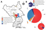 Thumbnail of Locations and molecular analysis of 2014 epidemic in Uganda and South Sudan. A) Affected areas in both countries. Light brown indicates districts where we did not obtain any isolate for molecular analysis; red, orange, and blue areas represent affected districts with cholera isolates included in the analysis. B) Multilocus variable-number tandem-repeat (MLVA) analysis. Minimum spanning tree using pairwise difference was generated using Bionumerics version 6.6 (Applied Maths, Inc., A