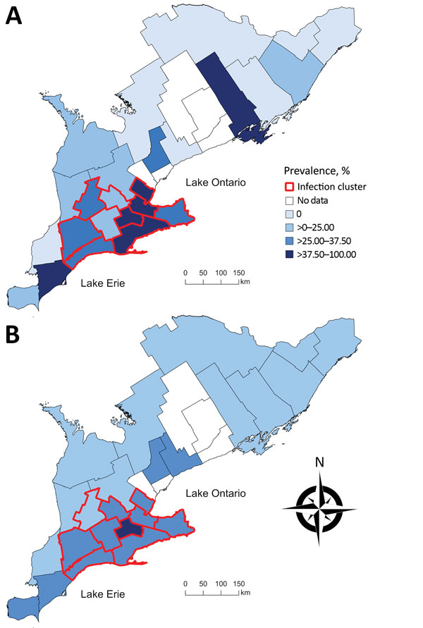 Choropleth maps of A) the unadjusted prevalence and B) the empirical Bayesian-smoothed prevalence of Echinococcus multilocularis tapeworms in coyotes and foxes across 25 southern Ontario public health units, 2015–2017. Unadjusted and smoothed prevalence estimates are categorized by quartiles on the basis of unadjusted prevalence estimates. Red boundaries indicate a significant spatial cluster of high prevalence identified by using a spatial scan test with a Bernoulli model on the basis of data g