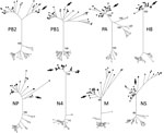 Thumbnail of Maximum-likelihood phylogenetic trees showing inferred relationships among nucleotide sequences for the complete coding regions of gene segments for influenza A virus strain A/northern pintail/Alaska/UGAI16–3997/2016(H8N4) (white circle indicated with an arrow) and reference sequences from viruses isolated from birds in Eurasia (black circles) and North America (white circles). Bootstrap support values for continentally affiliated clades are shown. Phylogenetic trees with complete s