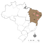 Thumbnail of Location of the deaths of farmed Nile tilapia (Oreochromis niloticus) (shaded area) caused by Streptococcus agalactiae serotype III sequence type 283 (red diamonds), Brazil. BA, Bahia state; CE, Ceará state; PE, Pernambuco state; PI, Piauí state; ST, sequence type.