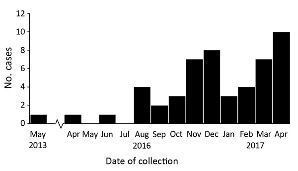Number of confirmed clinical cases of Candida auris in New York, USA, May 2013–April 2017. Dates indicate the month that the first sample positive for C. auris was collected. The cases from May 2013, April 2016, and June 2016 were retrospectively identified after the June 2016 clinical alert from the Centers for Disease Control and Prevention was issued (19). The case from 2013, in a patient who had traveled to New York City from abroad for medical care, was probably a distinct importation with