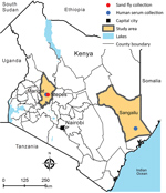 Thumbnail of Geographic location of sand fly collection site (Ntepes) and district hospitals of Marigat and Sangailu, where human serum samples were collected, Kenya.