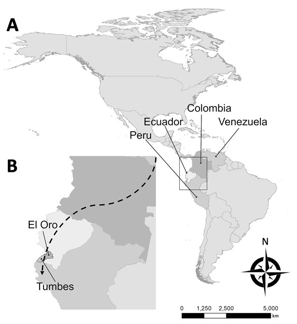 Probable migration route of imported malaria cases described in study of effects of political instability in Venezuela on malaria resurgence at the Ecuador–Peru Border, 2018. A) Locations of the 4 countries along the migration route in South America; B) El Oro Province and Tumbes Region on the Ecuador–Peru border. The city of Huaquillas, Ecuador, is 70 km southwest of Machala, the location of the single autochthonous malaria case in this country. Huaquillas is the primary border crossing from Ec