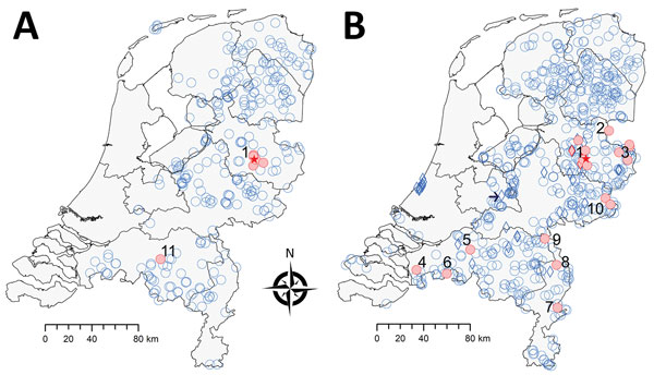 Geographic distribution of tick-borne encephalitis virus (TBEV) based on surveillance of roe deer, the Netherlands, during A) 2010 and B) 2017. Data for 2010 were reproduced from Jahfari et al. (1). Red indicates roe deer serum samples that showed positive results in the TBEV neutralization test, and blue indicates roe deer serum samples that showed negative results in this test or an ELISA. Numbers indicate potential foci, and red stars indicate location of 2016 TBEV-RNA positive ticks in Salla