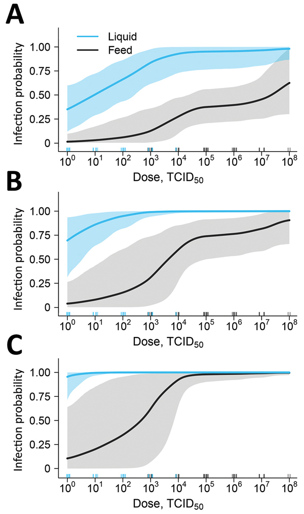 Estimated liquid (blue line) and feed (black line) infection probability at different oral doses of ASFV based on experimental data to determine the infectious dose of ASFV when consumed naturally. Data are shown for 1 exposure (A), 3 exposures (B), and 10 exposures (C). Shading indicates 95% CIs. Numbers of individual pig dosages are represented by the blue and black tick marks above the horizontal axis. Repeated exposures can be viewed interactively online (https://trevorhefley.shinyapps.io/as