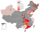 Thumbnail of Incidence rate (cases/1,000 live births) of invasive group B streptococcal disease among infants <3 months of age by province, China. Number of live births per participating hospital is provided. Gray shaded areas did not participate in this study. Inset shows South China Sea Islands. BJ, Tsinghua University Hospital; CQ, Chongqing Health Center for Women and Children; CS, Changsha Hospital for Maternal and Child Health; GD, Guangdong Women and Children's Hospital; GX, The Matern
