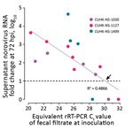 Thumbnail of Estimation of a cutoff for rRT-PCR Ct value of inoculating fecal filtrate indicative of the ability to generate productive norovirus replication (i.e., containing infectious norovirus) in a human intestinal enteroid (HIE) line. We tested 3 strains of pandemic human norovirus genogroup II genotype 4 (GII.Pe-GII.4 Sydney) (CUHK-NS-1030, from a 1-year-old boy; CUHK-NS-1127, from a 79-year-old man; CUHK-NS-1499, from a 46-year-old man). We used 3-fold serial dilutions of norovirus-conta