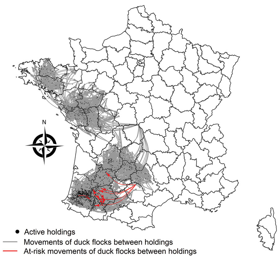 Spatial distribution of live-duck movements identified as responsible for highly pathogenic avian influenza A(H5N8) transmission events between holdings through the movement networks, France, November 1, 2016–February 2, 2017.