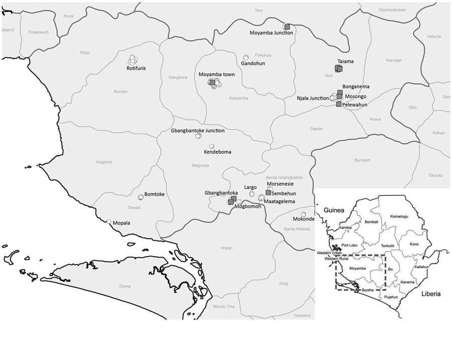 Sampling locations for study of Ebola virus neutralizing antibodies in dogs, Moyamba District, Sierra Leone, 2017. White circles indicate sampling locations; gray squares indicate dog serum samples with virus neutralizing activity.
