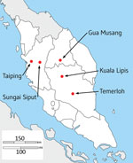 Thumbnail of Locations of hospitals in peninsular Malaysia from which clinical Plasmodium knowlesi infections were sampled and sequenced in the states of Perak (Taiping and Sungai Siput), Kelantan (Gua Musang), and Pahang (Kuala Lipis and Temerloh). Of 56 infection samples processed through leukocyte depletion and subsequent DNA extraction, 32 had sufficient quantity and purity of P. knowlesi DNA for Illumina sequencing (https://www.illumina.com), of which 28 yielded high coverage genomewide seq