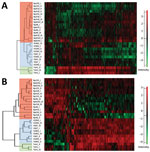 Heatmaps showing hierarchical clustering performed on Z-score normalized log2-transformed label-free intensity values of cell-associated (A) or secreted (B) protein fractions of historic and recent isolates of Bordetella pertussis from the Czech Republic and the Tohama I strain. Clustering of recent, historic, and Tohama I strains is indicated by red, blue, and green, respectively. Scale bars indicate intensity of proteins normalized by Z-score.
