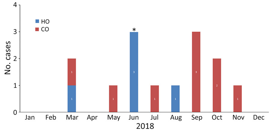 Epidemic curve of carbapenemase-producing Serratia marcescens infections by month in 2 hospitals of a large healthcare system in Miami, Florida, USA, 2018. Asterisk (*) indicates the implementation of new interventions in response to the outbreak. CO, community-onset; HO, hospital-onset.