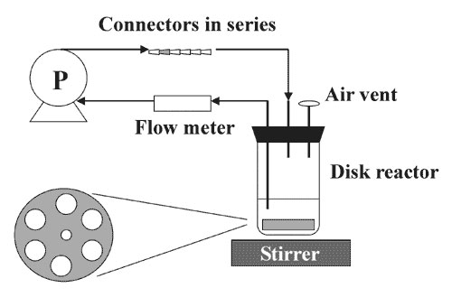 Biofilm disk reactor system.