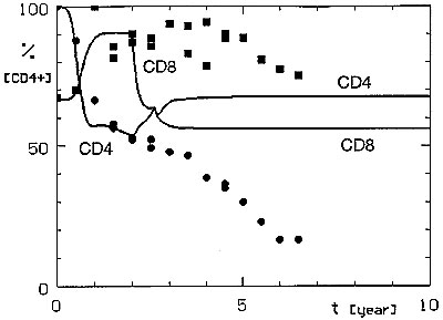 Simulated CD4+ and CD8+ lymphocyte dynamics after permanent treatment with anti-CD8 antibodies started 2 years after the acquisition of the HIV infection. Cells mediating the protective anti-HIV immune reaction are not affected by this treatment ([[INLINEGRAPHIC('96-0405-M2')]]R = 0.007, C = 0.0).