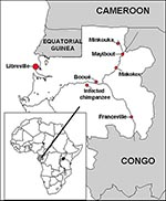 Thumbnail of Geographic distribution of the three Ebola virus hemorrhagic fever epidemics and site of the infected chimpanzee in Gabon.