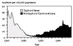 Thumbnail of Reported incidence of typhoid fever and nontyphoidal salmonellosis in the United States, 1920-1995.
