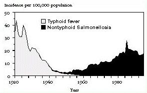 Reported incidence of typhoid fever and nontyphoidal salmonellosis in the United States, 1920-1995.