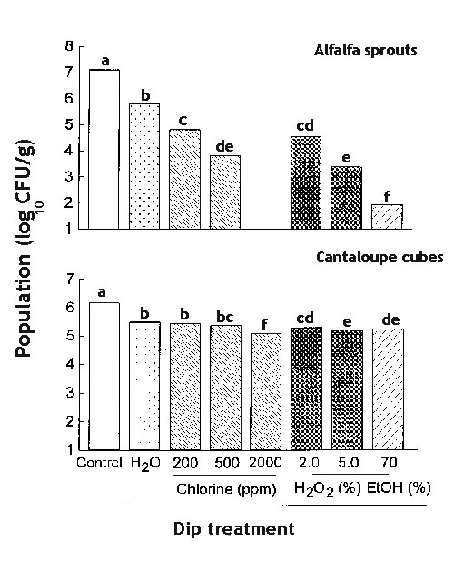 Efficacy of chlorine, hydrogen peroxide, and ethanol in killing Salmonella on alfalfa sprouts and cantaloupe cubes. Bars not noted by the same letter are significantly different (p < 0.05).