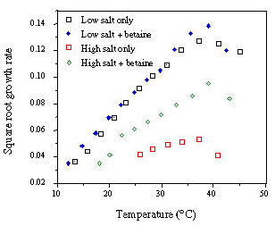 Effect of betaine on the growth of Escherichia coli in glucose-minimal medium. Without added NaCl the growth rate yield and minimum growth temperature are the same with and without betaine. With 4% NaCl the growth rate and yield are lower without betaine and the actual minimum temperature for growth is approximately 9°C lower than with betaine (K. Krist, unpub. data).