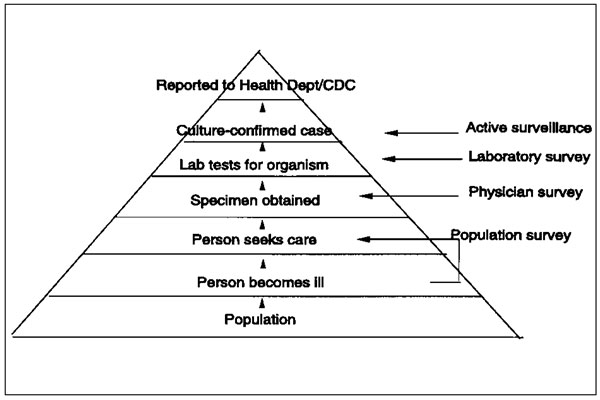 The prevalence of illness pyramid. Passive surveillance data represent only the tip of the iceberg. For a bacterial infection to be included in the passive surveillance system, it must pass through the following steps: a person becomes ill with a diarrheal disease, the patient must go to a doctor, the doctor must order a bacterial stool culture, the assigned microbiology laboratory must culture for this organism and report the infection to the state health department, and the state health depart