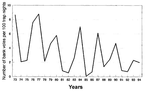 Bank vole abundance in Grimsö, 1973–1994. Untransformed data.