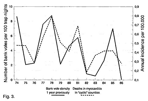 Myocarditis deaths, 1974–1986 relative to bank vole abundance 1 year previously (vole data from 1973-1985). Untransformed data.