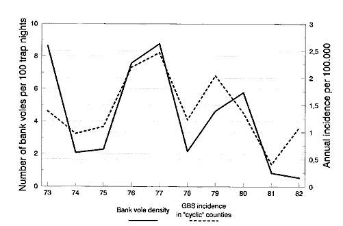 Time series of Guillain-Barré syndrome incidence, 1973–1982, relative to bank vole abundance in the same years. Untransformed data.