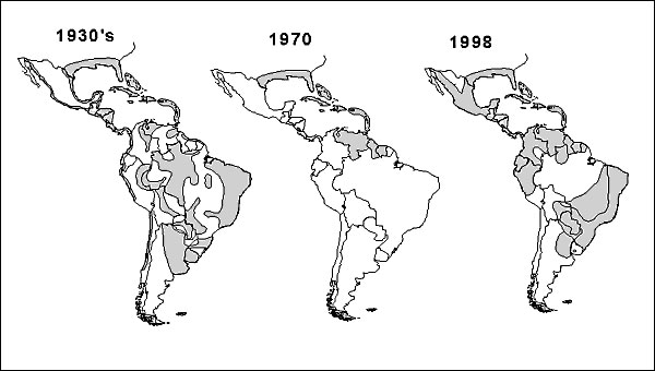 Geographic distribution of Aedes aegypti in the Americas, 1930s, 1970, and 1998.