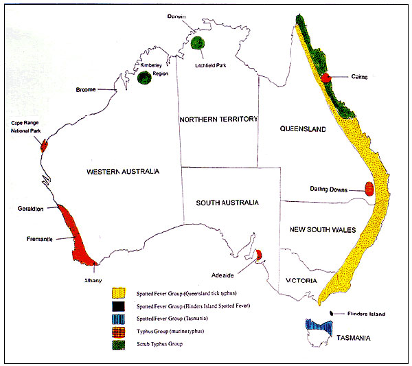 Geographic distribution of rickettsial diseases in Australia.