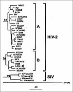 Thumbnail of Phylogenetic classification of HIV-2 sequence from Lebanese patient LE25 (arrow) basing on the prot gene (GenBank accession no. AF026912). The tree was generated by the maximum-likelihood method. Numbers at the branch nodes connected with subtypes indicate bootstrap values. The distinct HIV-2 subtypes are delineated. The scale bar indicates an evolutionary distance of 0.10 nucleotides per position in the sequence. Vertical distances are for clarity only.