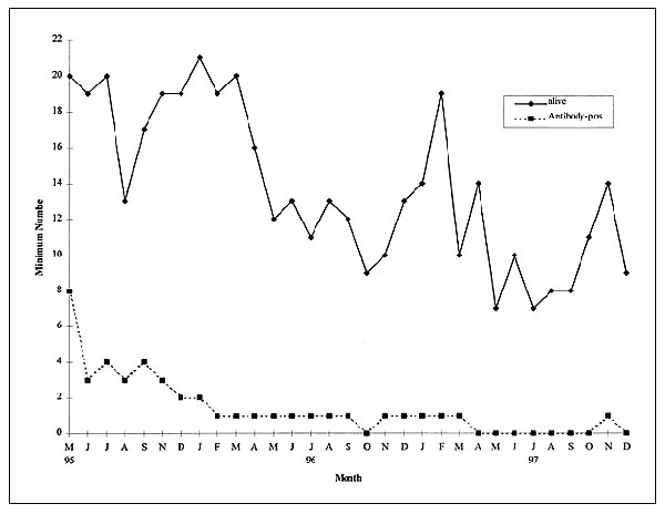 Population trends of brush mice, as determined by the minimum number known to be alive, Santa Rita Experimental Range, southeastern Arizona, May 1995–December 1997.
