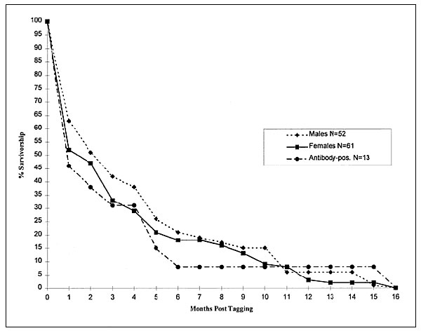 Survivorship functions (percentage of brush mice known to be alive after initial capture) based on recapture data, Santa Rita Experimental Range, southeastern Arizona, May 1995–December 1997.
