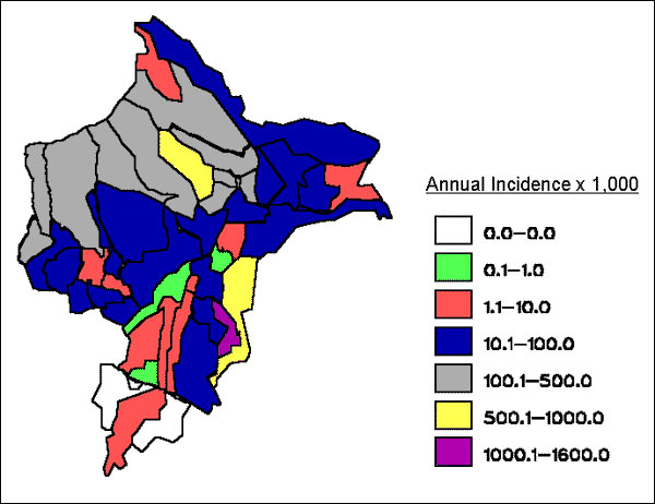 Annual parasite index in Loreto, by district (per 1,000 population).